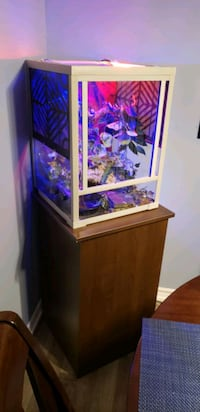 Reptile Tank and stand.  Barrie, L4M 2V5