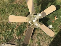 beige 5 bladed ceiling fan with lights Clifton, 07012