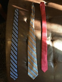 Business Professional Dress Ties  GUELPH