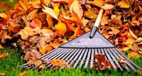 Leaf removal, I'll come to you. Price varies Hagerstown, 21742