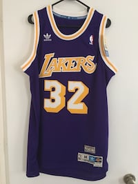 Magic Johnson 1979-80 Lakers Jersey Dover, 03820