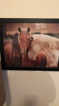 Brown and white horse painting Las Vegas, 89147