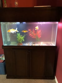 Black framed clear glass fish tank Herndon, 20170