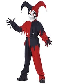 Evil Jester Youth costume Arnold, 21012