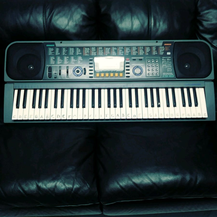 PianoCasio black and white electronic keyboard.
