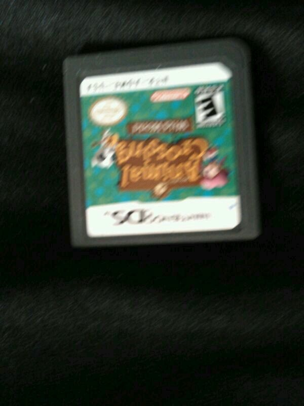 Nintendo DS Pokemon game cartridge