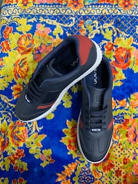 AVVA  BLACK BLUE RED