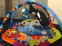 Baby Einstein Under The Sea Gym Floor Play Mat Glen Allen, 23060