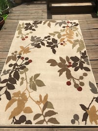 5 x 8 Leaf Pattern Indoor Area Rug - Excellent Condition  Chicago, 60622