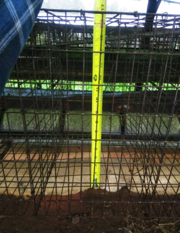 7.5ft chicken cages 2121d98f-77fa-4483-9bfe-525d9dc4859c