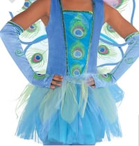 PEACOCK PRINCESS COSTUME, SIZE 12-14 Tucson, 85747
