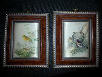 Set of 2  pictures of birds