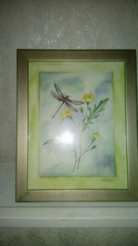 Picture  butterfly 8x10
