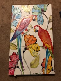 Parrot paintings with flowers Gainesville, 32607