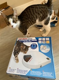 Automatic wet food/ dry food Pet feeder