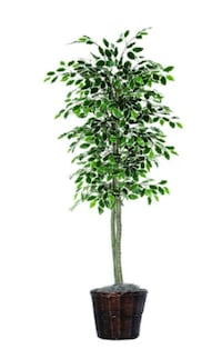 "ARTIFICIAL INDOOR TREE FOR DECOR 6 "" FREDERICK"