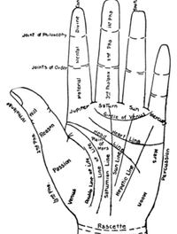 accurate palm readings Pensacola