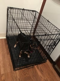 dog crate pick up in Fairfield Fairfield, 94533