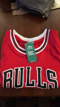 red and white Nike Chicago Bulls 23 jersey Elgin, 60124