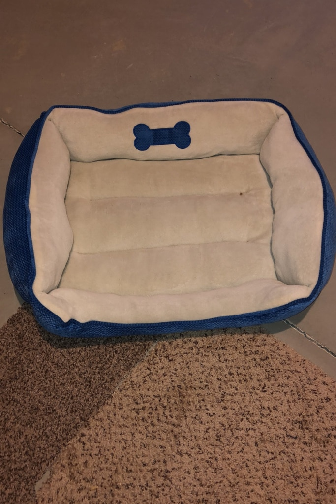 Photo Large dog bed barely used this