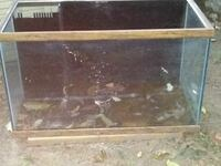 square clear glass fish tank