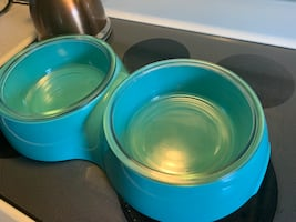 Double size dog bowl