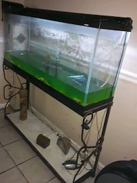 Fish tank and all accessory hood light filter pump and stand