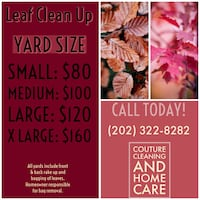 House cleaning Chevy Chase