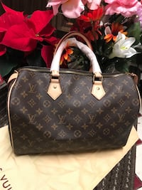 LV speedy 35 Sterling, 20164