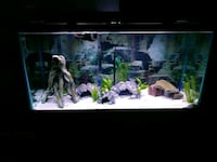 90 gallon clear glass fish tank Cleveland, 44110