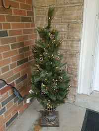 Christmas 4ft Milliary Spruce potted w/ lights