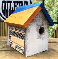 Oilers inspired bird house