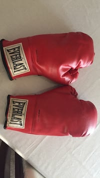 pair of red Everlast boxing gloves Markham, L3S 2B6