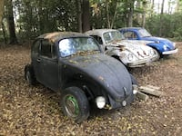 Three black,white, and blue volkswagen beetle coupes King George, 22485