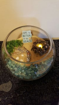 beach open glass terrarium St. Albert, T8N 2Y4