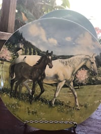 black and white horse painting Bonita Springs, 34135