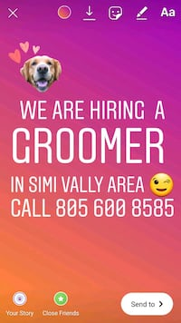 Dog grooming Simi Valley, 93063