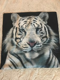 New: Tiger Pillow Cover