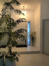 9 foot artificial lighted areca palm in pot. West Palm Beach, 33410