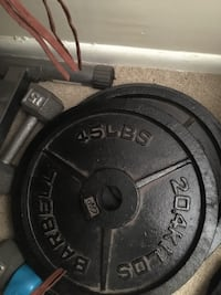 45 lbs barbell weights (two)