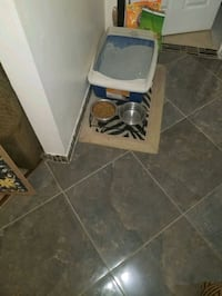 Cat liter box and food bowl