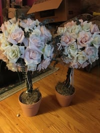 Large pave pink and white roses planted trees   Oshawa, L1H 6P6