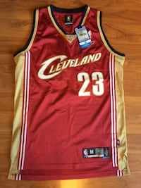 red brown and black cleveland cavaliers basketball jersey Alexandria, 22311