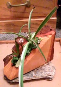 Handcrafted Planter w Spider Plants and Succulents Camino, 95709