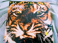black and brown tiger painting 45 km