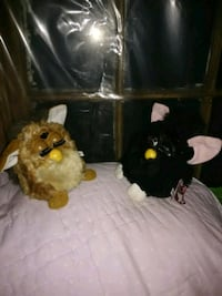 Black and Brown Furby plush toys Charlotte, 28214