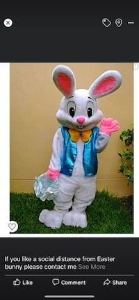 Easter bunny for hire  social distancing Surrey