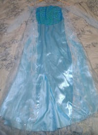 Elsa Frozen costume Riverside, 92504