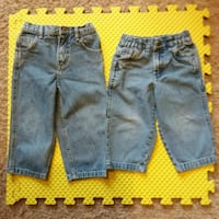 2T Boys Jeans with Zippers and Snaps-Various Brand Westminster, 80031