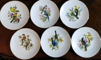 Set of 6 beautiful vintage collector plates- Birds Toronto, M2J